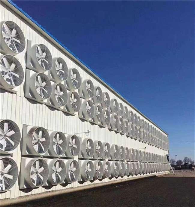 玻璃钢风机厂房千赢网页手机版登入设备